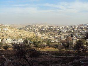 palestine-107955_640