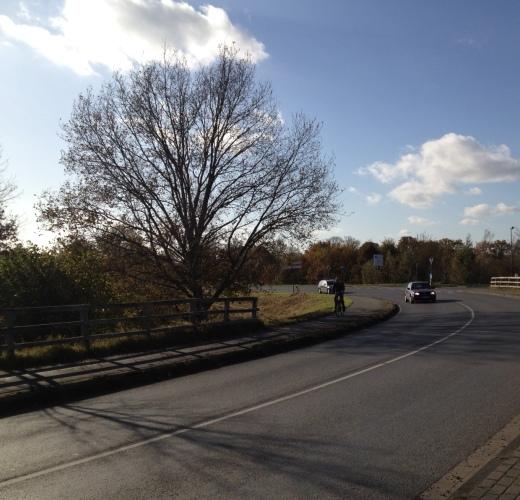 国道沿いののどかな道路
