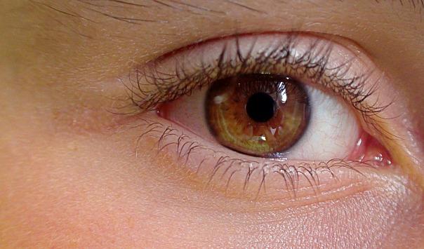 eye-419646_1920