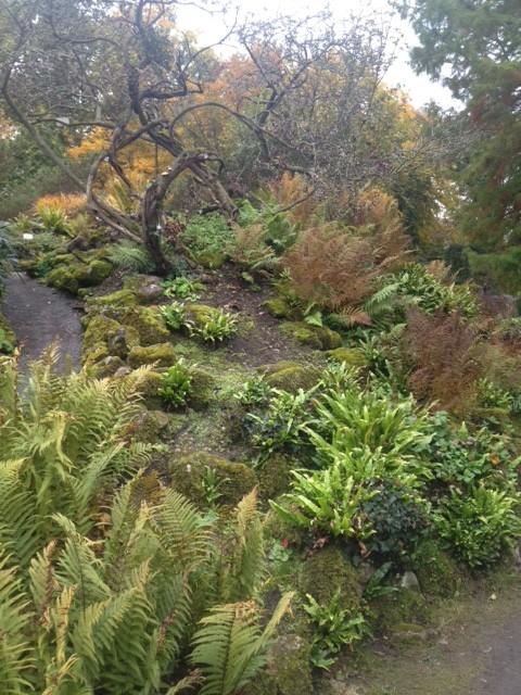 ドイツの植物園その2